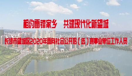 长沙市望城区2020年面向社会公开招(选