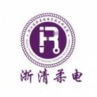 浙江清华柔性电子技术研究院